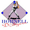Hornell Dodgers  Live Internet & Phone Broadcasts